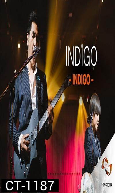 "Songtopia Livehouse By AIS PLAY Present ""FRIENDEVER""  Colorpitch และ Indigo"