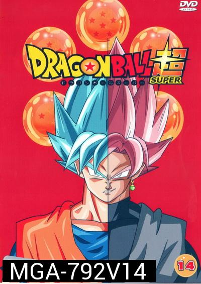 Dragon Ball Super Vol.14