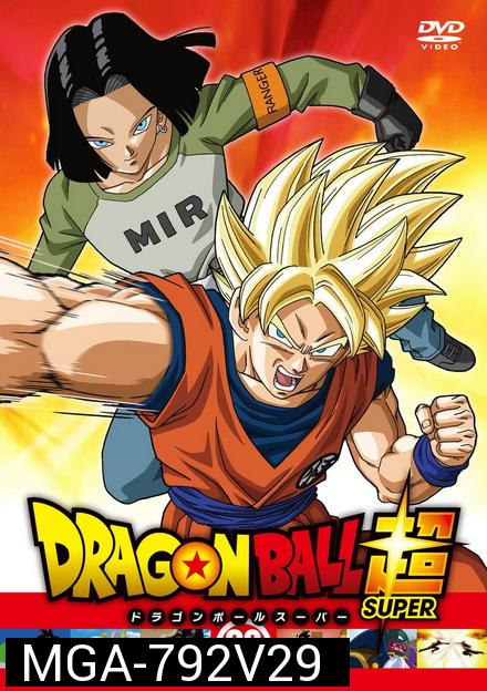Dragon Ball Super Vol.29