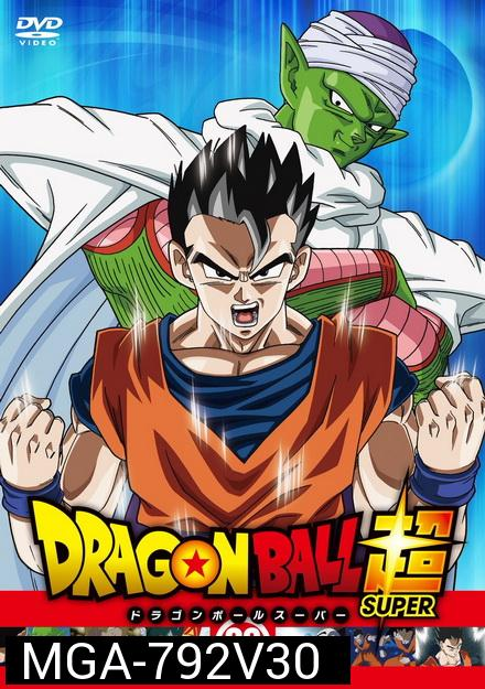 Dragon Ball Super Vol.30