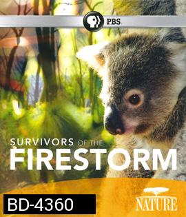 Nature: Survivors of the Firestorm